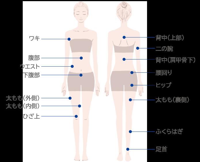 Local de indicação para injeção de dissolução de gordura_body