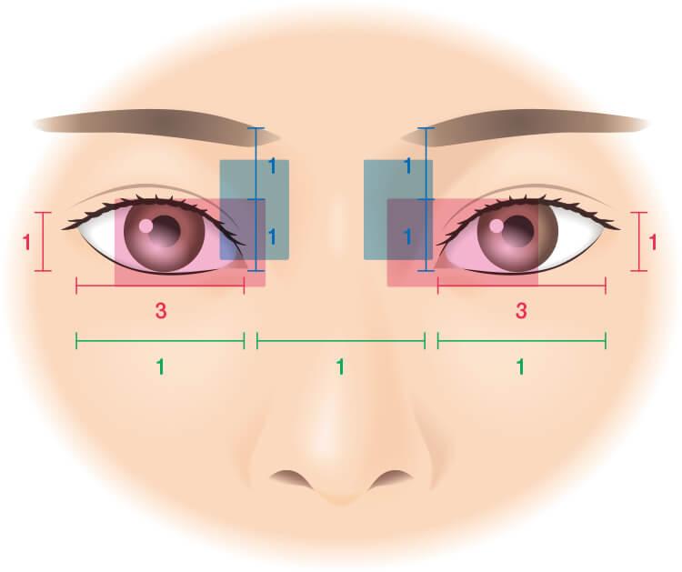 目もとの黄金比率についてのイラスト